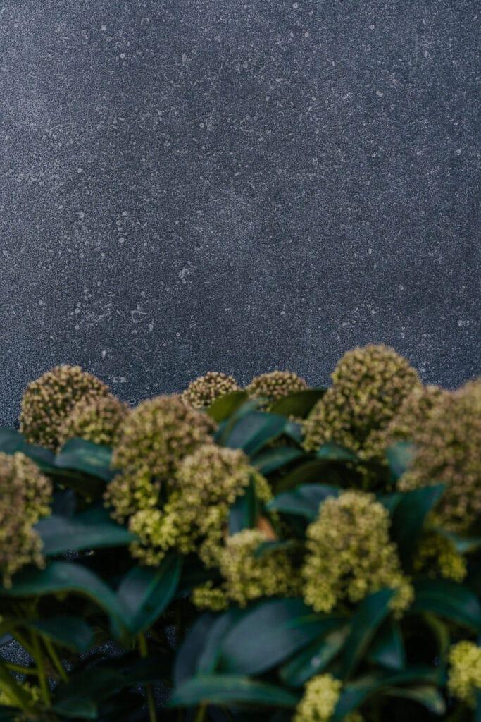 Bei Kramer und Kramer erlebt man Gartenkultur umfassend, vom Concept Store bis zur Baumschule. Für die neue Homebase hat Martin Steininger einen minimalistischen Baukörper designt, der mit viel räumlichen Qualitäten, Design-Highlights und einer innovativen Naturstein-Keramik-Glas Fassade aufwarten kann